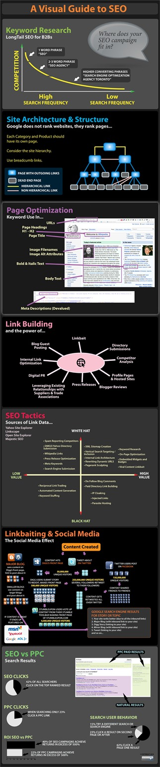 seo-info-graphic-bpro